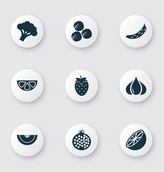 vegetable icons set with garlic orange nutrition vector image