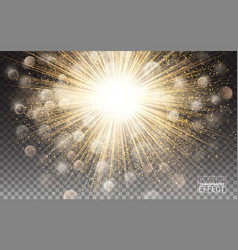 lights effect bright sparkles gold glowing vector image vector image