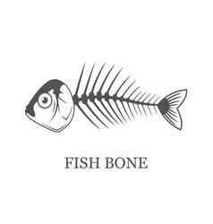 Fish bone fish skeleton grey vector