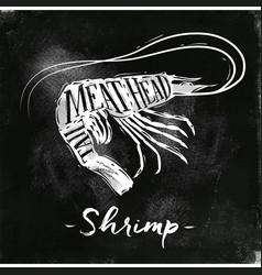 shrimp cutting scheme chalk vector image vector image