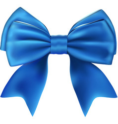 Beautiful Isolated Blue Bow vector image