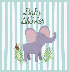 baby shower card with cute elephant vector image