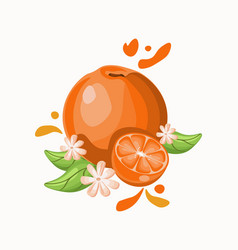 Orange delicious fruit on black white vector
