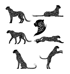 Set of graphic cheetahs vector image
