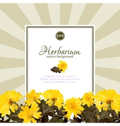Spring nature background with yellow flowers vector
