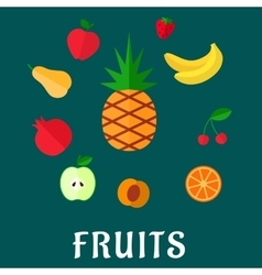Fresh tropical and garden flat fruits set vector image