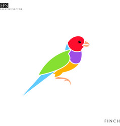gouldian finch from australia vector image