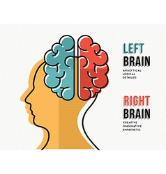 Left and right brain concept with head silhouette vector image