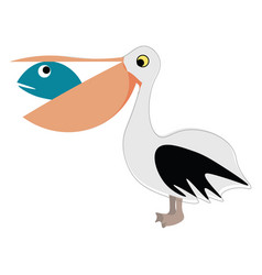 pelican with fish in beak on white background vector image