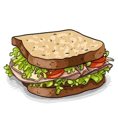 Sandwich color picture vector