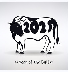 Symbol year white bull with black spots vector