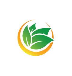 circle leaf nature logo image vector image
