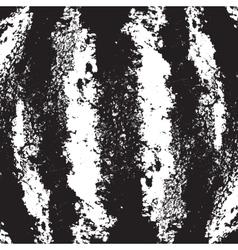 Watermelon texture vector