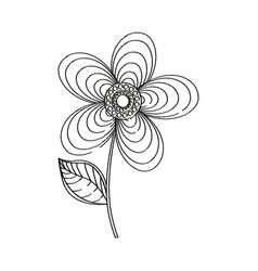 geranium flower decoration sketch vector image vector image