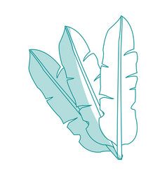 blue silhouette image set leaves in feathers shape vector image vector image