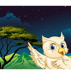 A big bird in the forest vector image