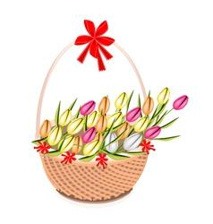 A Brown Basket of Beautiful Fresh Tulip vector image
