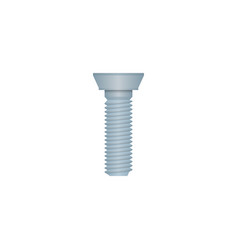 mechanic bolt isolated icon vector image