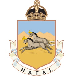 Natal Province vector