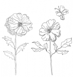 sketch with flowers vector image vector image