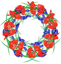 A wreath of red blossoming poppies green unblown vector
