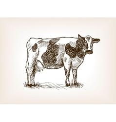Cow hand drawn sketch vector image