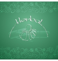 Herbal Remedy theme vector image