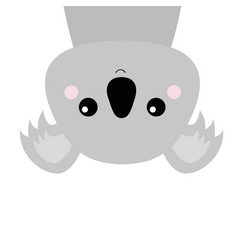 koala face head hanging upside down gray vector image