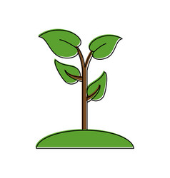 plant and grass icon image vector image