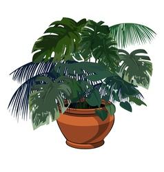 plants in pot vector image vector image