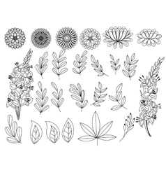 Set of outline autumn leaves and flowers vector
