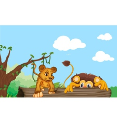 cub and lion vector image vector image
