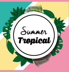 summer tropical badge leaves foliage vector image