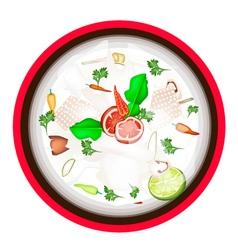 Tom Kha Gai or Thai Chicken Coconut Milk Soup vector image vector image