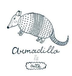 Armadillo is cute vector