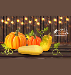 autumn colorful pumpkins card fall season vector image