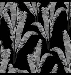 bananas leaves monochrome seamless pattern vector image
