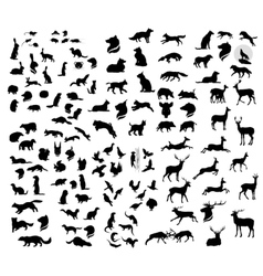 Big set of forest animals silhouettes vector