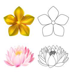 Golden metal pattern flower pink lotus vector