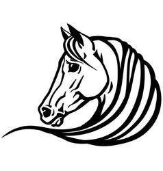 head white horse vector image