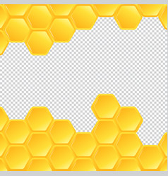 honeycombs on transparent background vector image
