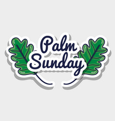Palm sunday message to catholic religion vector