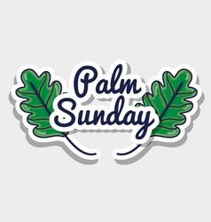 palm sunday message to catholic religion vector image