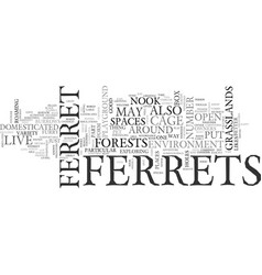 Where do ferrets live text word cloud concept vector