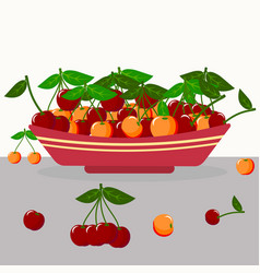 yellow and red cherry in a plate vector image