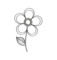 magnolia flower decoration sketch vector image