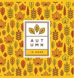 bright autumn cover banner or poster design vector image