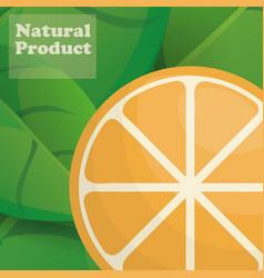 orange natural product poster design vector image