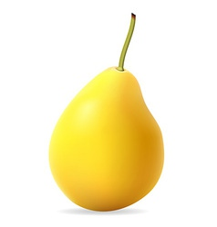 pear 001 vector image vector image