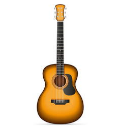 acoustic guitar stock vector image